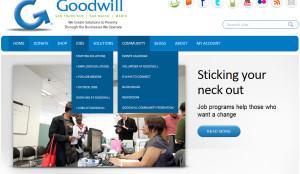 goodwill-plu-ins